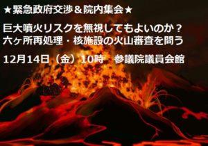 kyodaihunka-seifu-kosyo2
